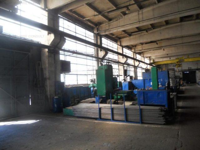 hale industriale
